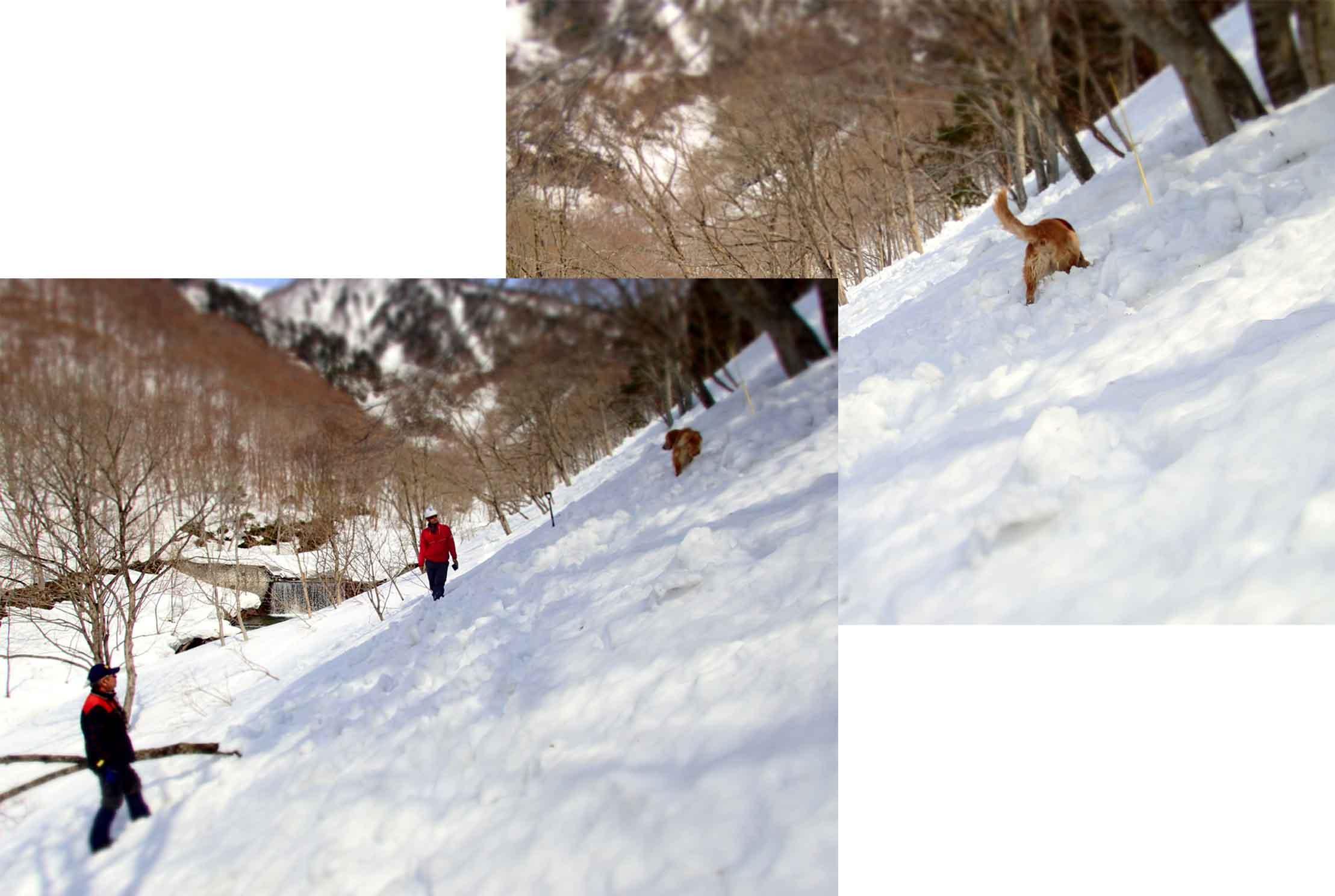3月29日 雪中訓練(28)
