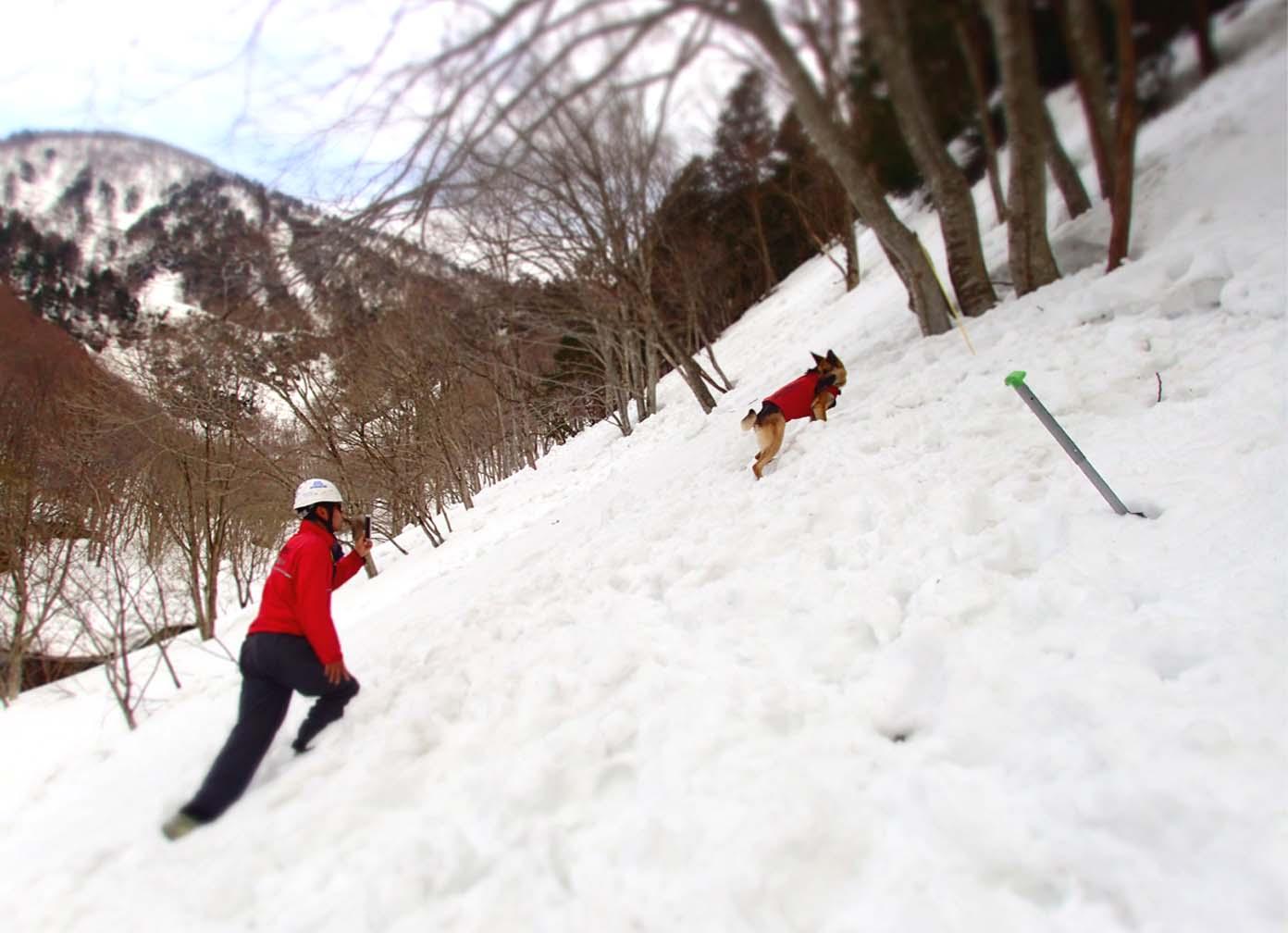 3月29日 雪中訓練(34)