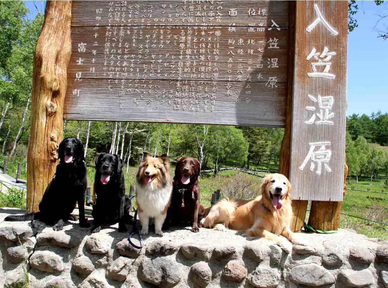 入笠山&訓練キャンプ(10)