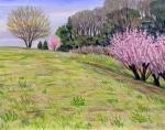 比良の丘春景