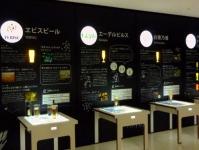 那須森のビール園8見学館