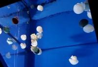 マリンピア松島水族館10海の不思議館クラゲ