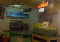 マリンピア松島水族館17おもしろアクア・ラボ