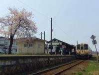 山形鉄道2014桜1西大塚駅