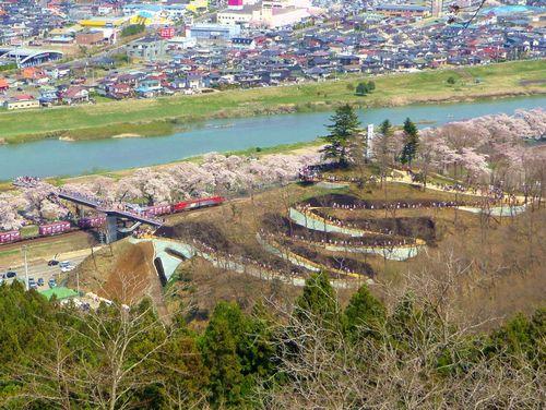 桜2015船岡城址・白石川堤2しばた千桜橋
