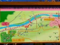 桜2015船岡城址・白石川堤3柴田町桜案内板