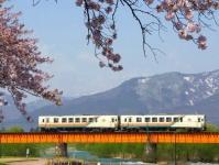 山形鉄道2015桜1野川堤防