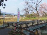 白鷹町2015桜5釜の越から薬師桜へ遊歩道