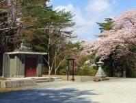 松島西行戻しの松公園2014桜9白衣観音