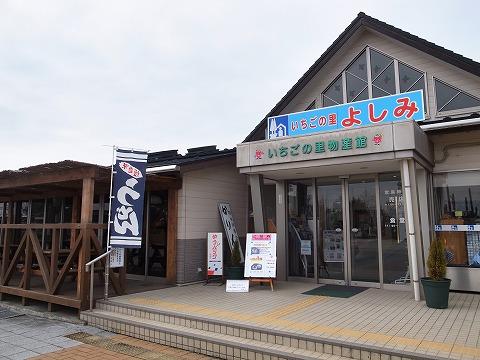 2015-02-24 いちごの里 よしみ 013