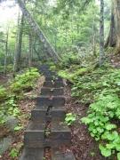 帝釈山への登山道