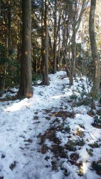 雪が凍った登山道
