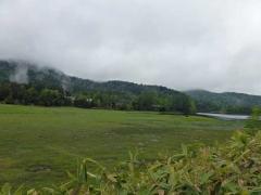 早朝の大江湿原