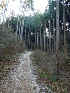 真っ白な登山道