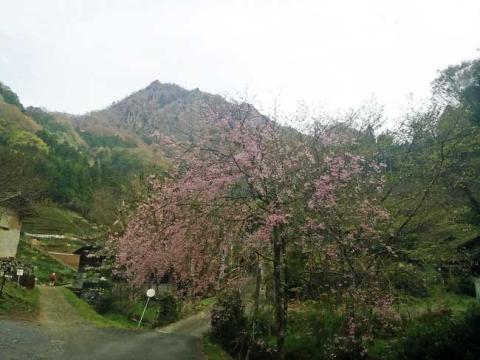 登山口(大円地山荘の前から)