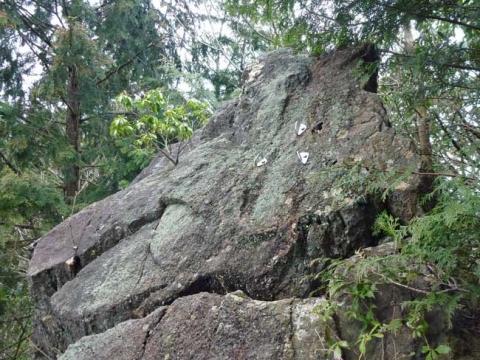ロッククライミングに使わている大岩