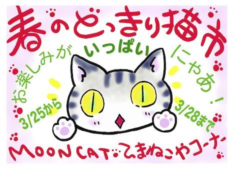 どっきり猫ポスター