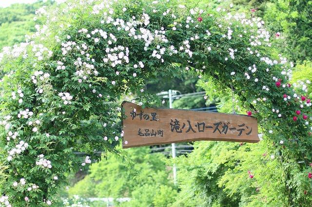 IMG_4443滝ノ入