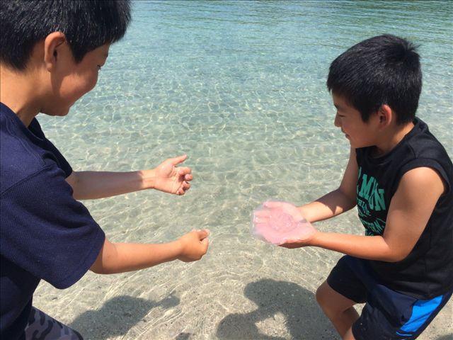 尻久砂里9 クラゲ