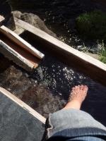 庄助の宿 瀧の湯3