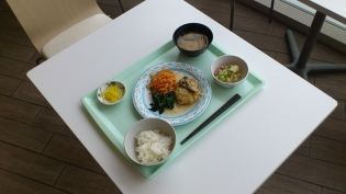 OWLでA定食(豆腐ハンバーグ)7