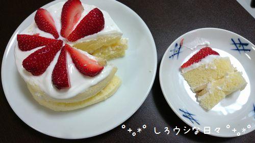 birthday2015_03.jpg
