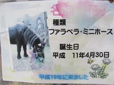 IMG_0130 大石神社