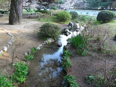 IMG_9563 出水の小川