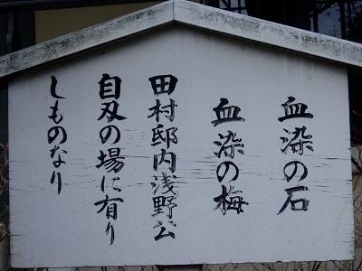 泉岳寺14 血染めの石・血染めの梅の看板B
