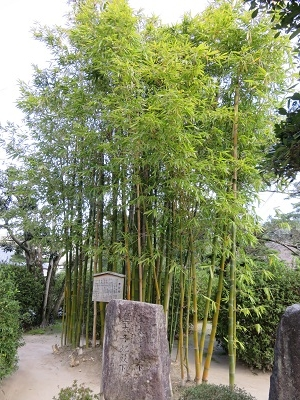 IMG_0844 松陰神社