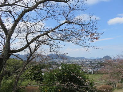 IMG_0990 吉井