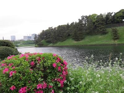 IMG_3564 桜田門