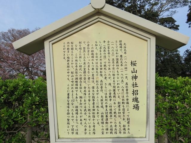 IMG_1726 桜山