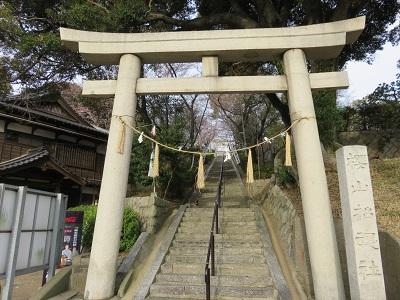 IMG_1717 桜山神社