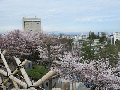 IMG_2877 浜松城