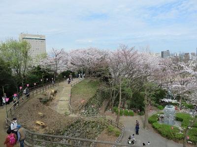 IMG_2887 浜松城