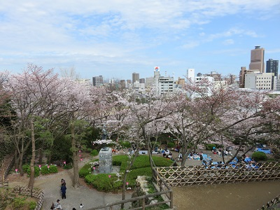 IMG_2888 浜松城