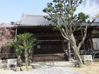 IMG_1797 光明寺