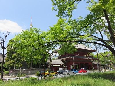 IMG_4046 増上寺