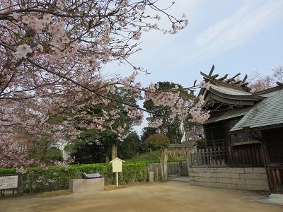 IMG_1724 桜山神社