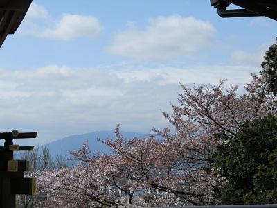 IMG_3173 霊明神社