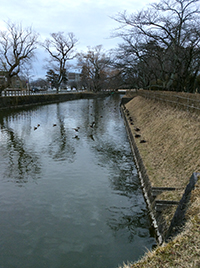 tsuruoka02.jpg
