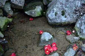 岩海にある岩の隙間に湧き出る清水