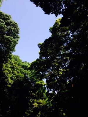 Meiji001.jpg