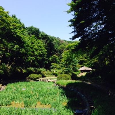 Meiji002.jpg