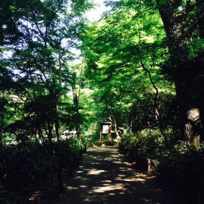 Meiji005.jpg