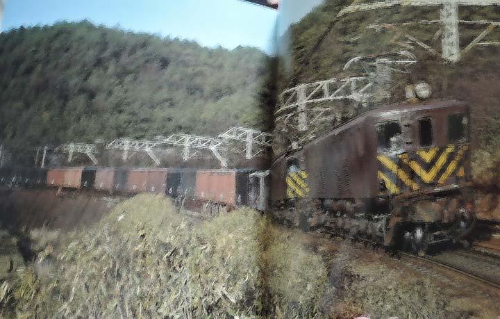 DSCN6572.jpg