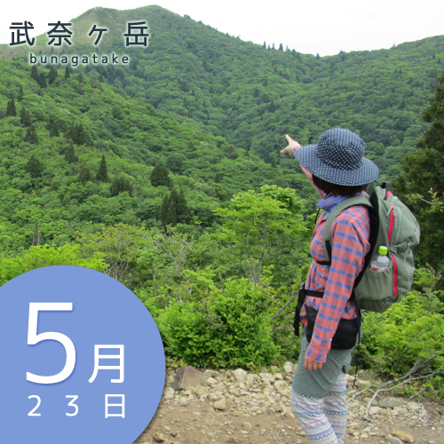 山ガールファッション|武奈ヶ岳