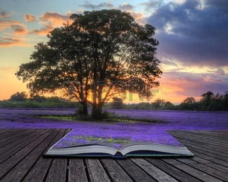 10525446-魔法の本、創造的なコンセプト-イメージにページから出るイギリスの田園
