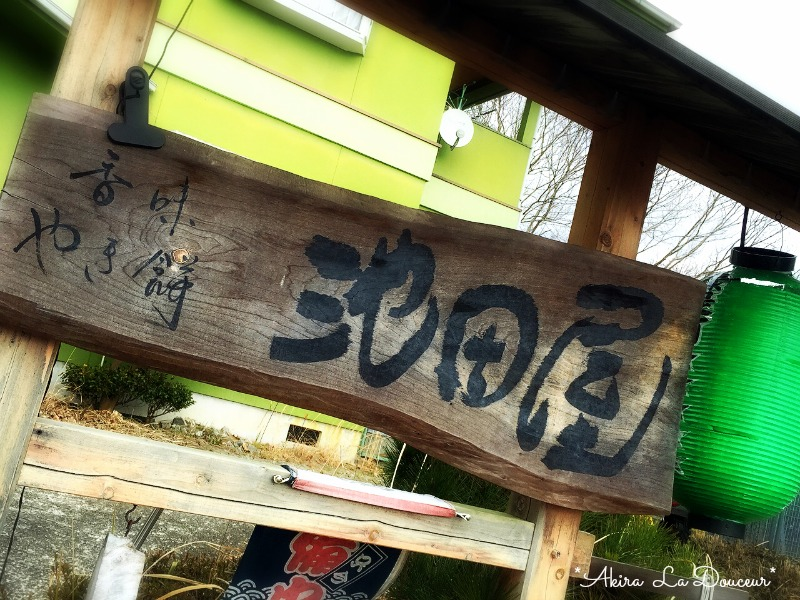 IMG_6239blog.jpg